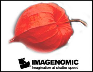 Imagenomic Portraiture 3.5.4 Crack + License Key [Latest 2021] Download
