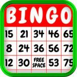 Bingo Numbers 2021 With Crack [Latest 2021] Free Download